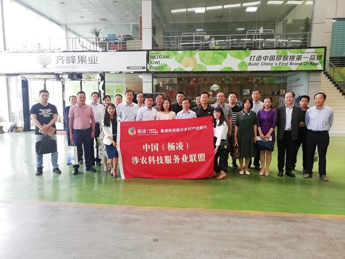 助力乡村振兴 促进产业兴旺 陕西省农村青年致富带头人协会走进眉县