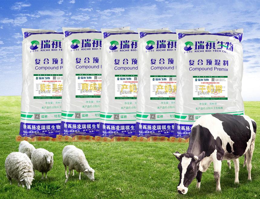 8%奶牛羊、肉牛羊用复合预混料