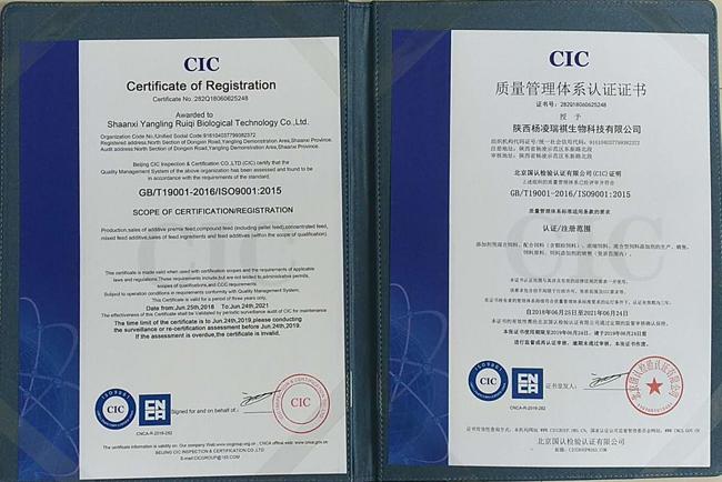 ISO9001:2015/GB-T19001-2016质量管理体系认证