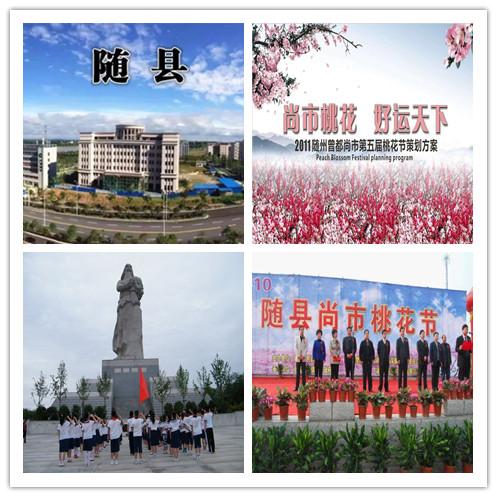 湖北随州尚市镇环卫服务项目