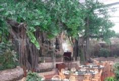 塑石假山生态公园造景