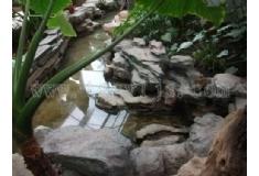 塑石假山生态景观阳光餐厅