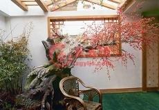 仿真树室内布置造景