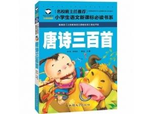 唐诗三百首 课外读物 水浒传 名著阅读